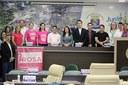 Câncer de mama é debatido em audiência pública na Câmara